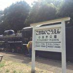 小金井公園で静態保存されている蒸気機関車 間近で見ることができて大迫力