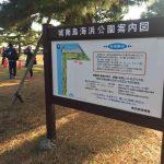 第10回城南島羽田マラソン 本番に向けた練習の場として