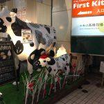 ニセコ髙橋牧場のチーズタルトはチーズ好きにおすすめ!イートインもあり
